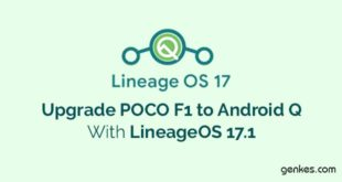 Upgrade Poco F1 to Android Q